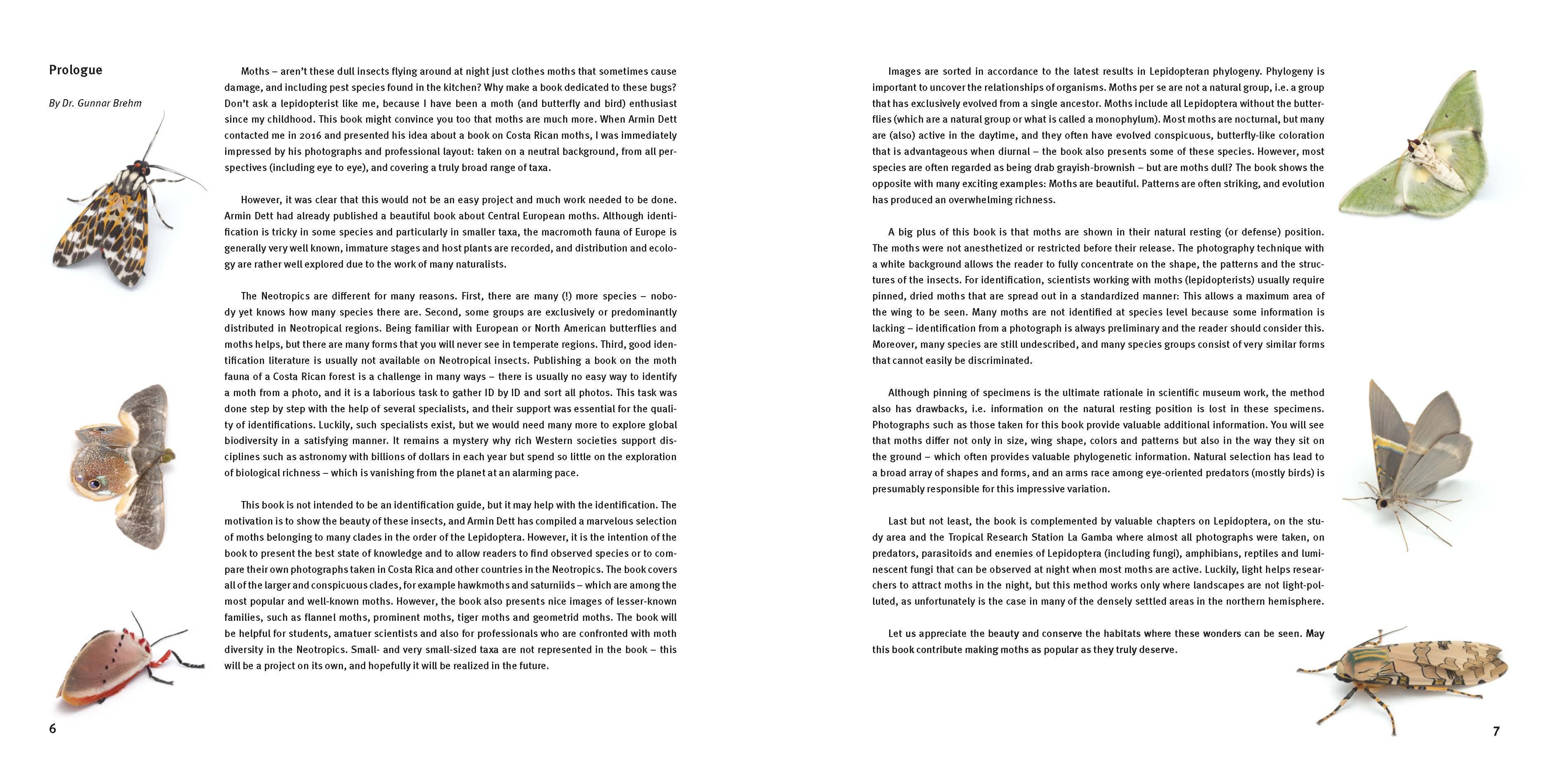 Seite 6-7